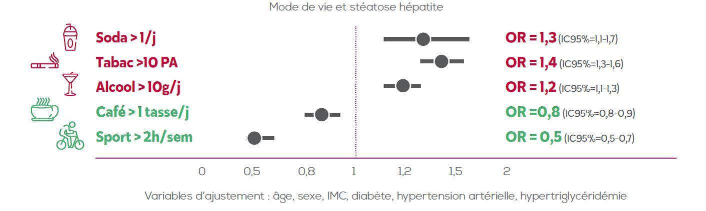 Mode de vie et stéatose hépatique